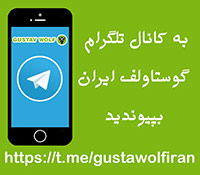 کانال تلگرام گوستاولف